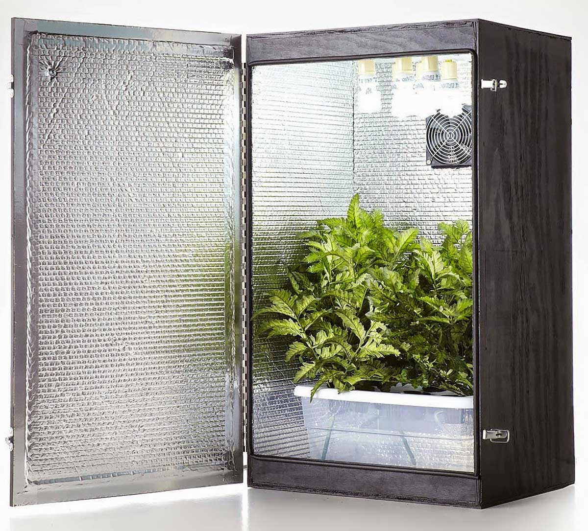 Advantages of Using Grow Boxes for Beginners